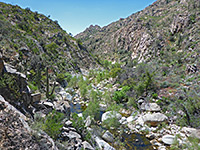 Sabino Canyon Trail