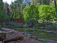 West Fork of Oak Creek