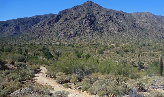 White Tank Mountain Regional Park Arizona