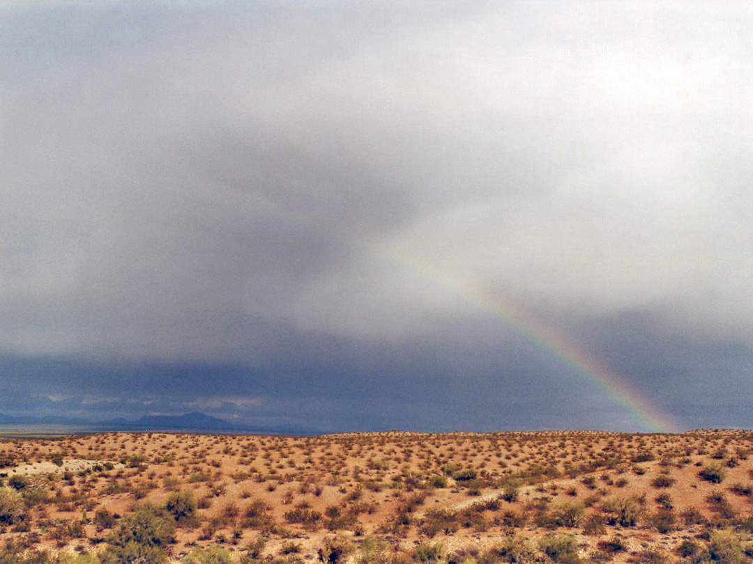 Rainbow over the desert