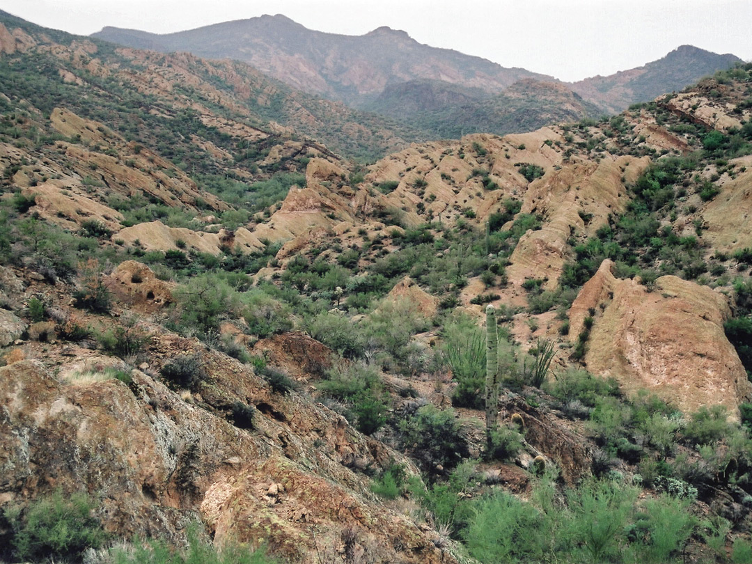 Canyon beside the Apache Trail