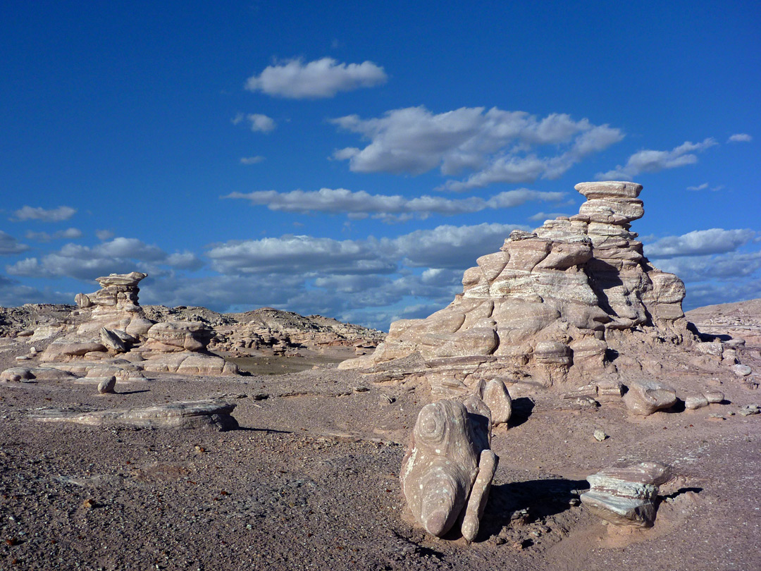 Black Forest, Petrified Forest National Park