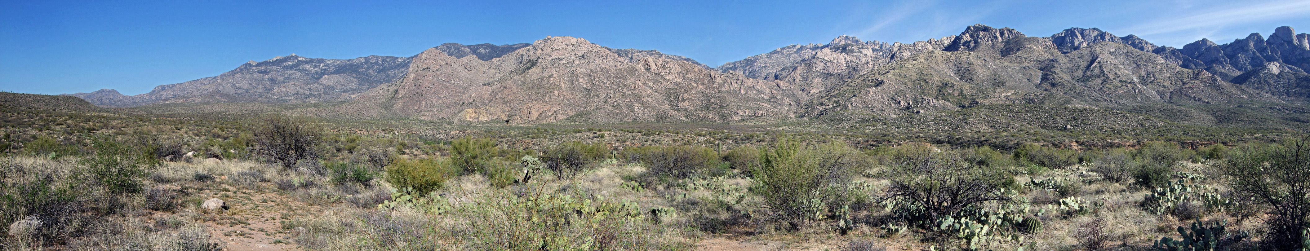 Panorama of the Santa Catalina Mountains