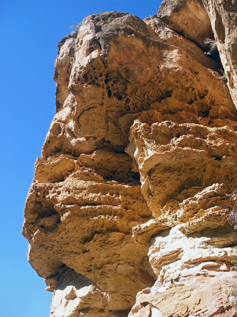 Eroded cliff face