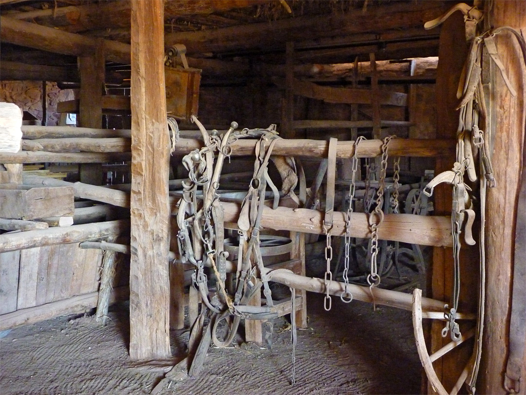 Harnesses in the barn