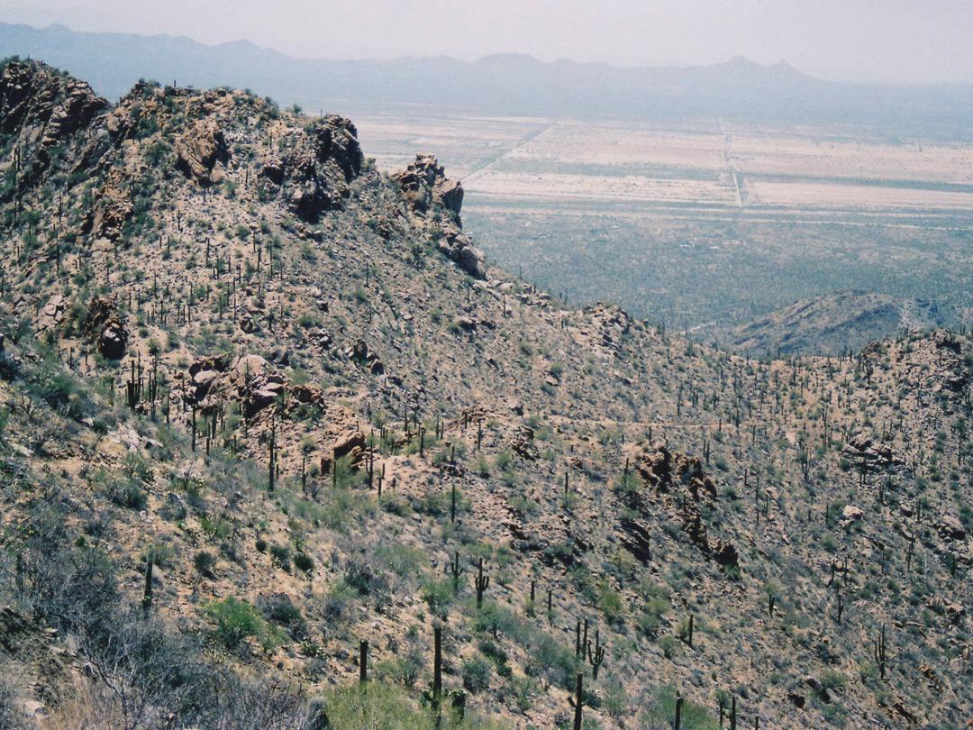 Saguaro National Park Map West Saguaro National Park