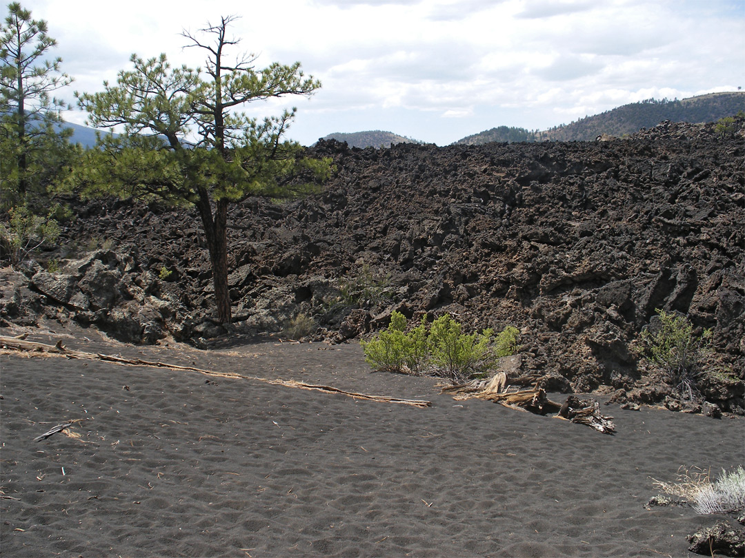 Edge of the Bonito Lava Flow