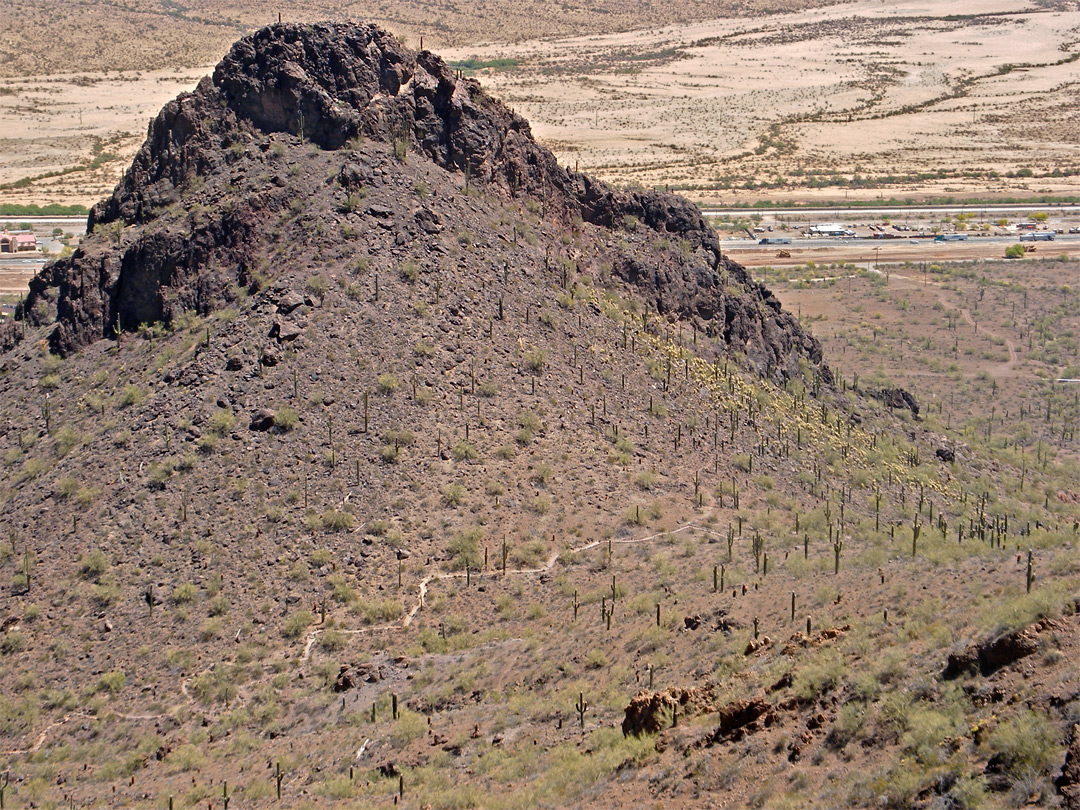 Saguaro-covered peak