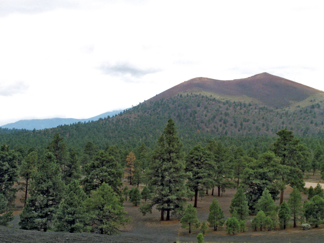 East side of Sunset Crater