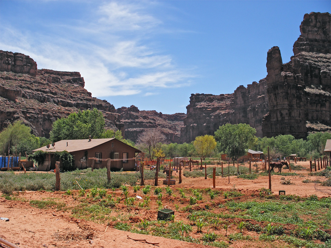 House in Supai