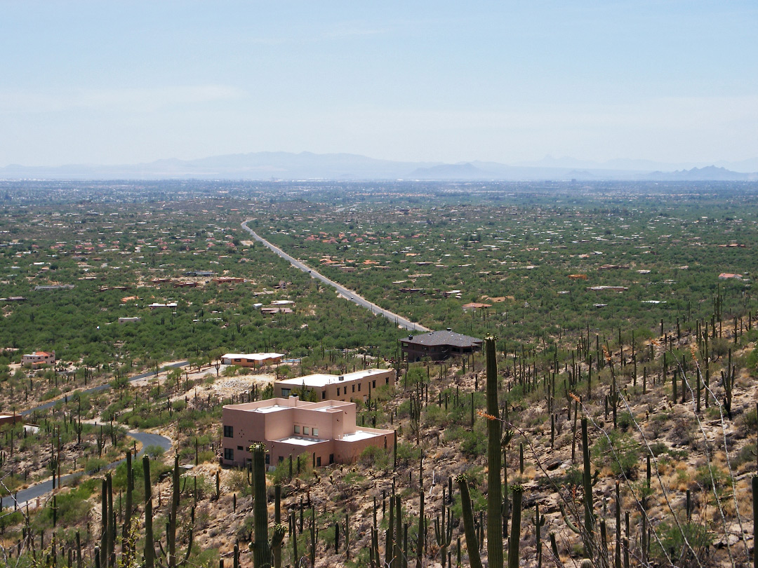 The Tucson suburbs