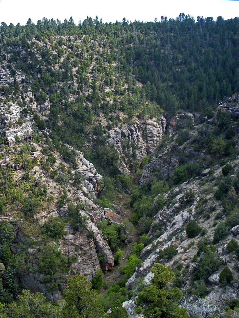 Walnut Canyon - east