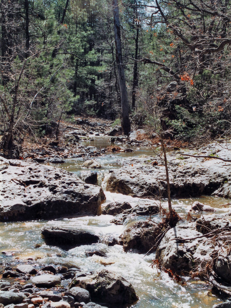 Stream in Meadow Canyon