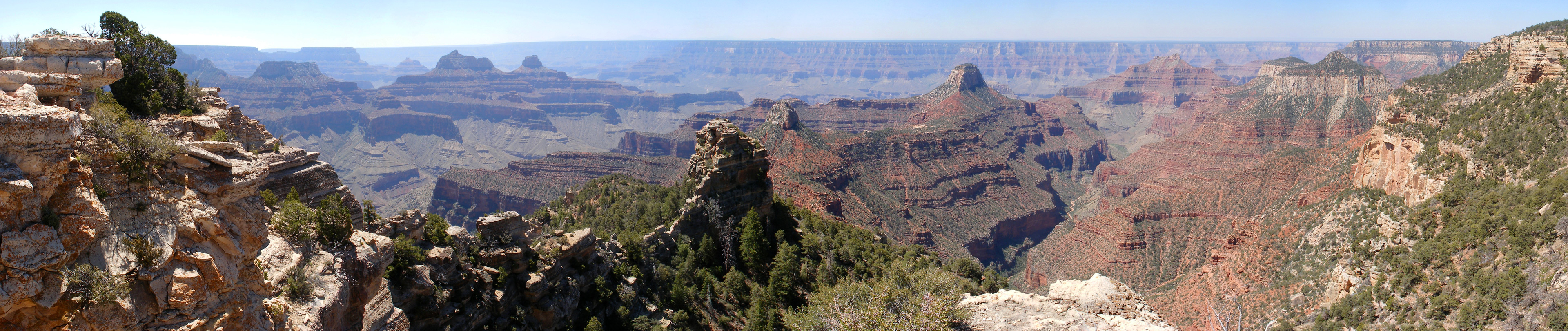 Panorama of the Grand Canyon, from Widforss Point
