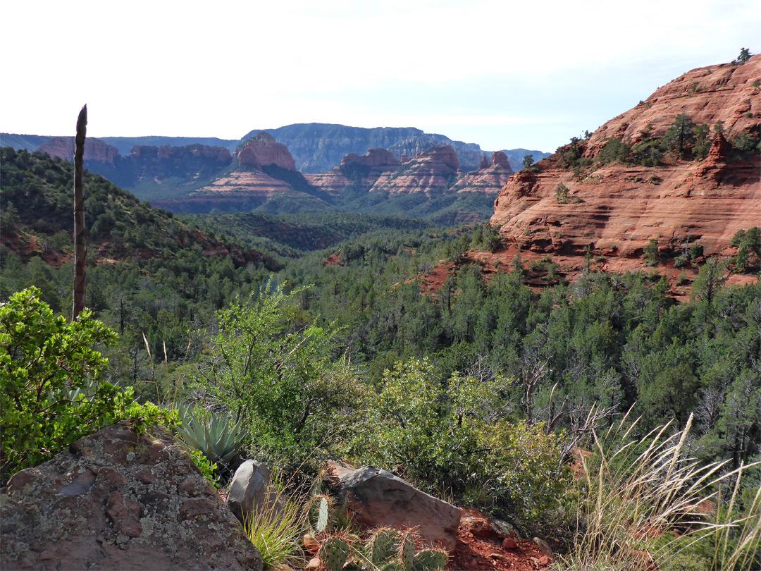 Grand Canyon Hotels >> Wilson Canyon Trail, Sedona, Arizona