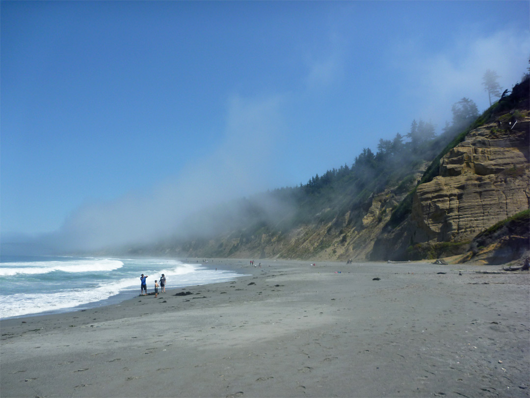 Fog Above Agate Beach