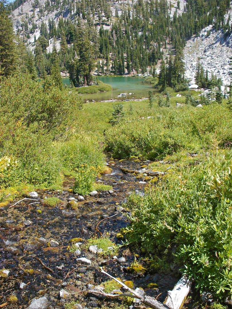 Stream above Cliff Lake