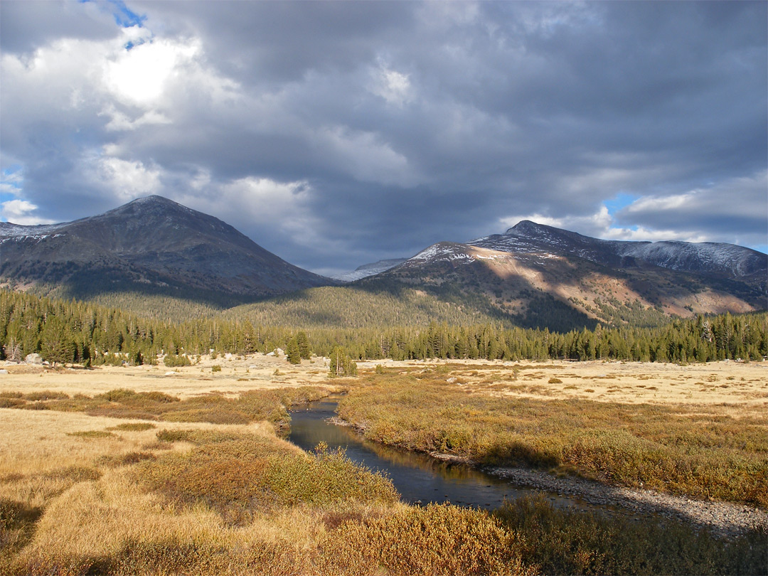 Dana Meadows and the Tuolumne River