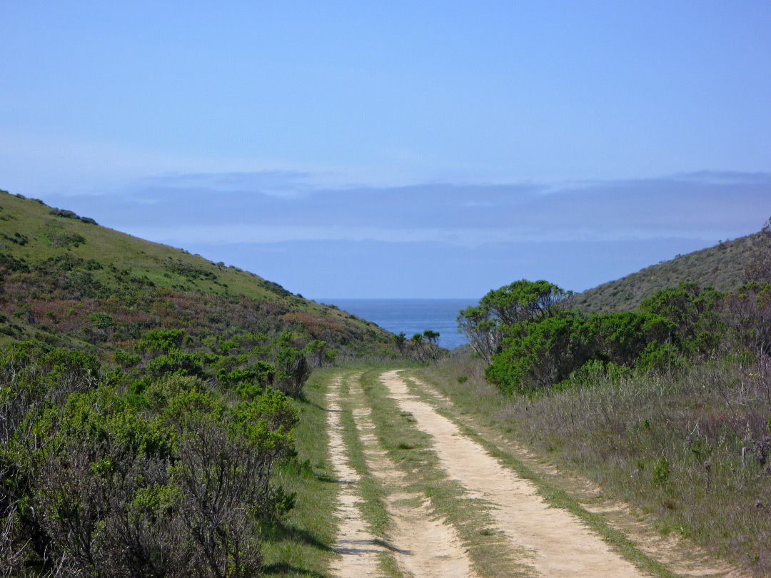 Trail to the coast