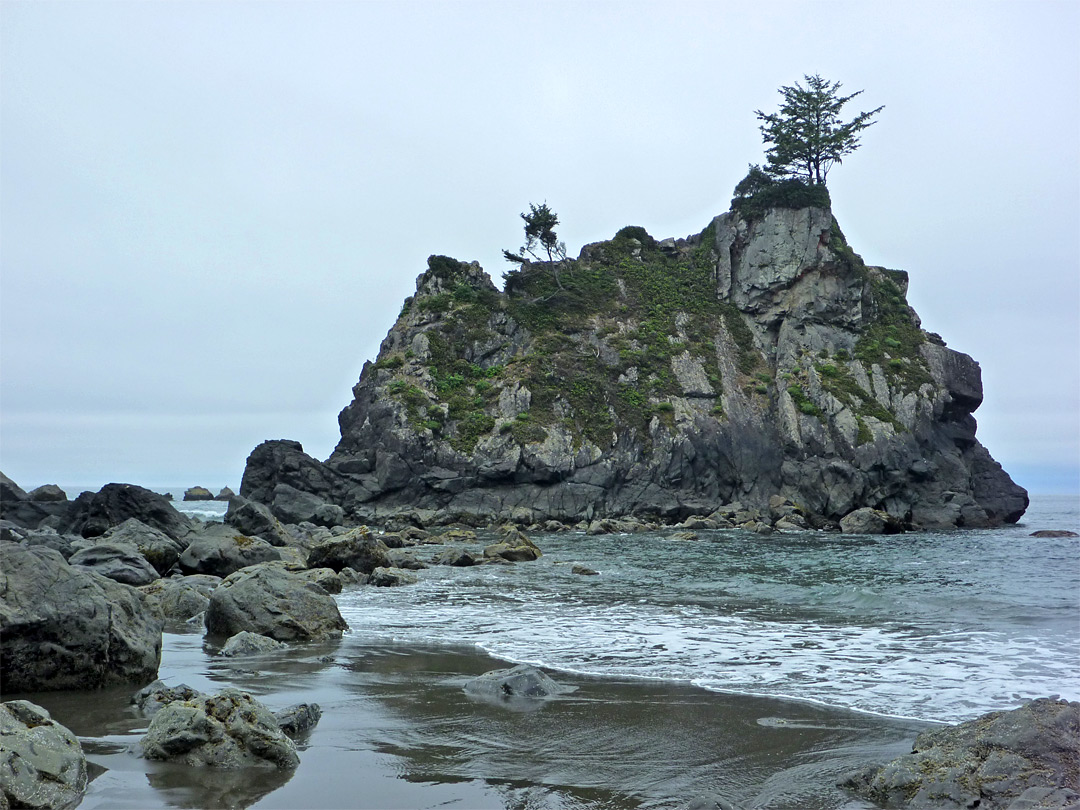Tiny island in Redwood National Park