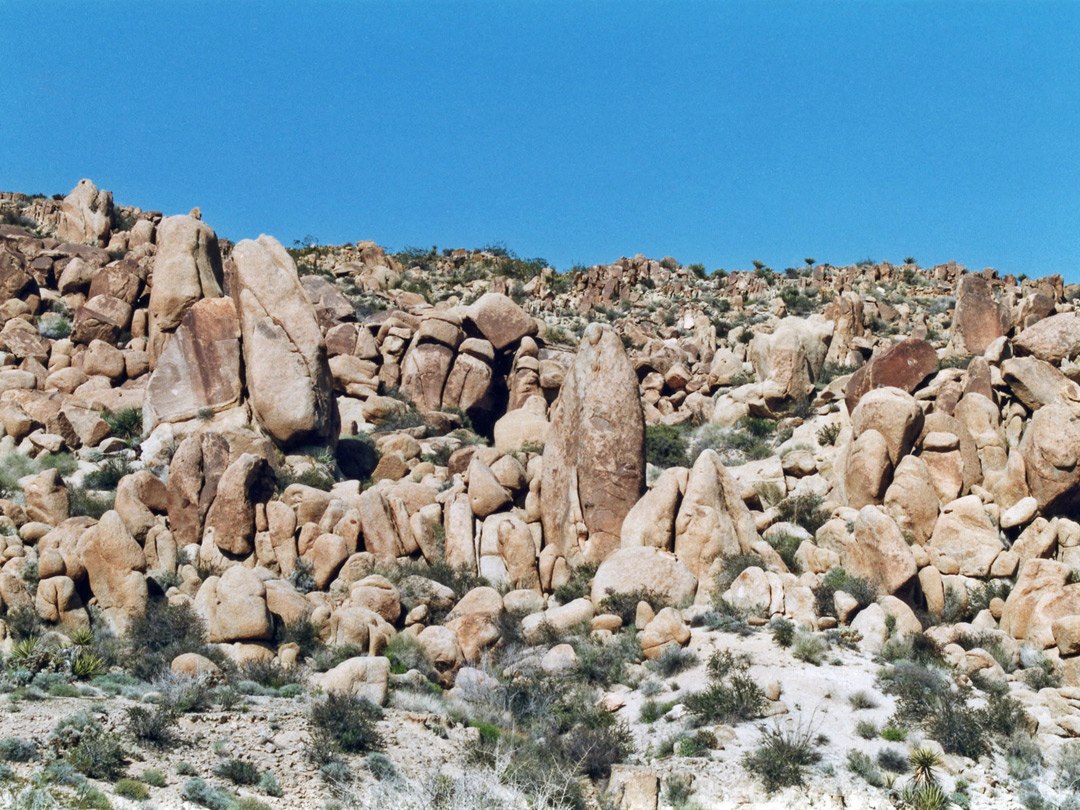 Boulders along the trail