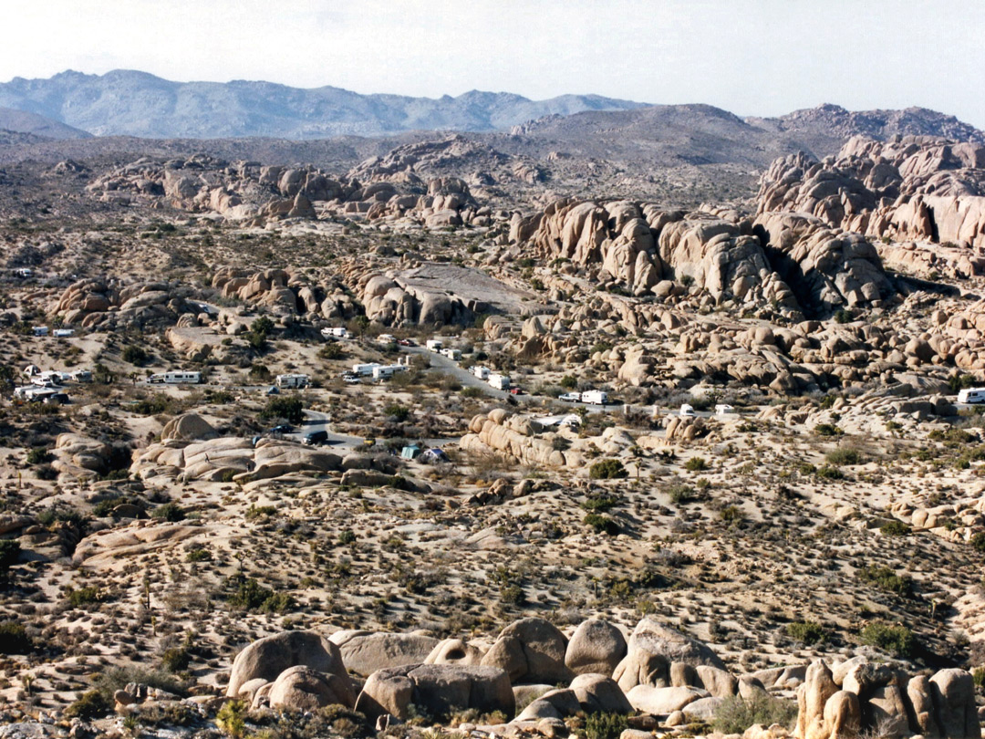 View of the Jumbo Rocks campground