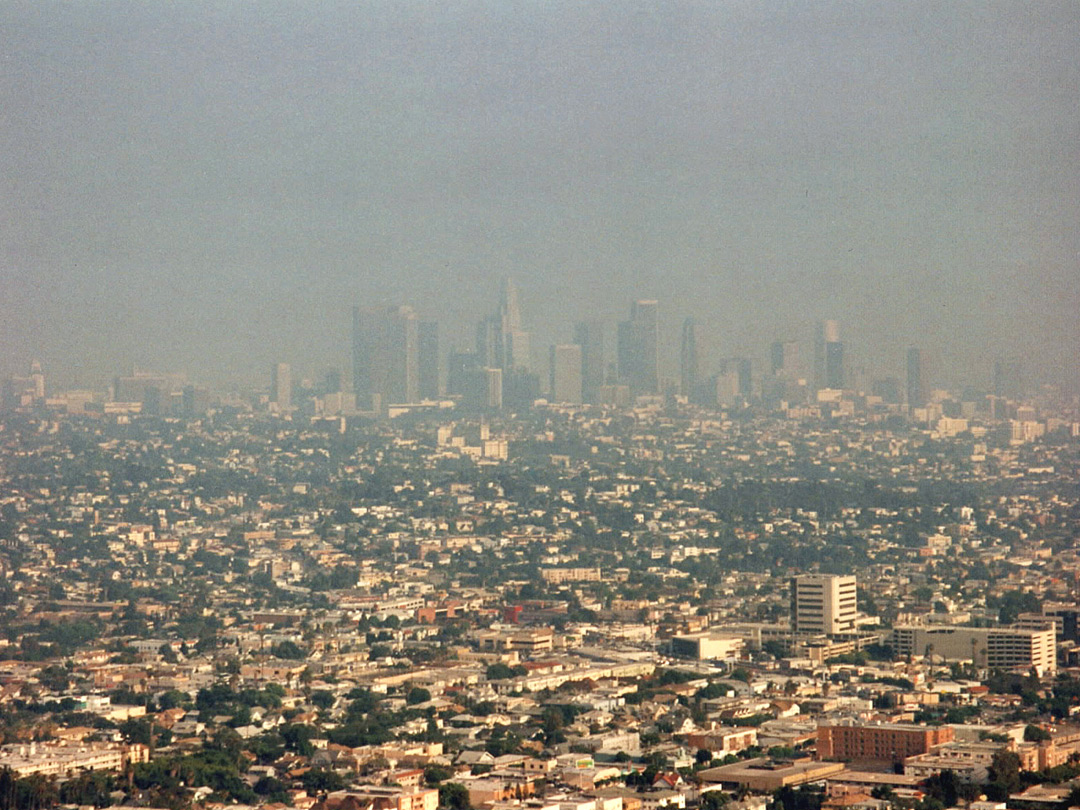 Hazy view of los angeles griffith park california hazy view of los angeles sciox Gallery