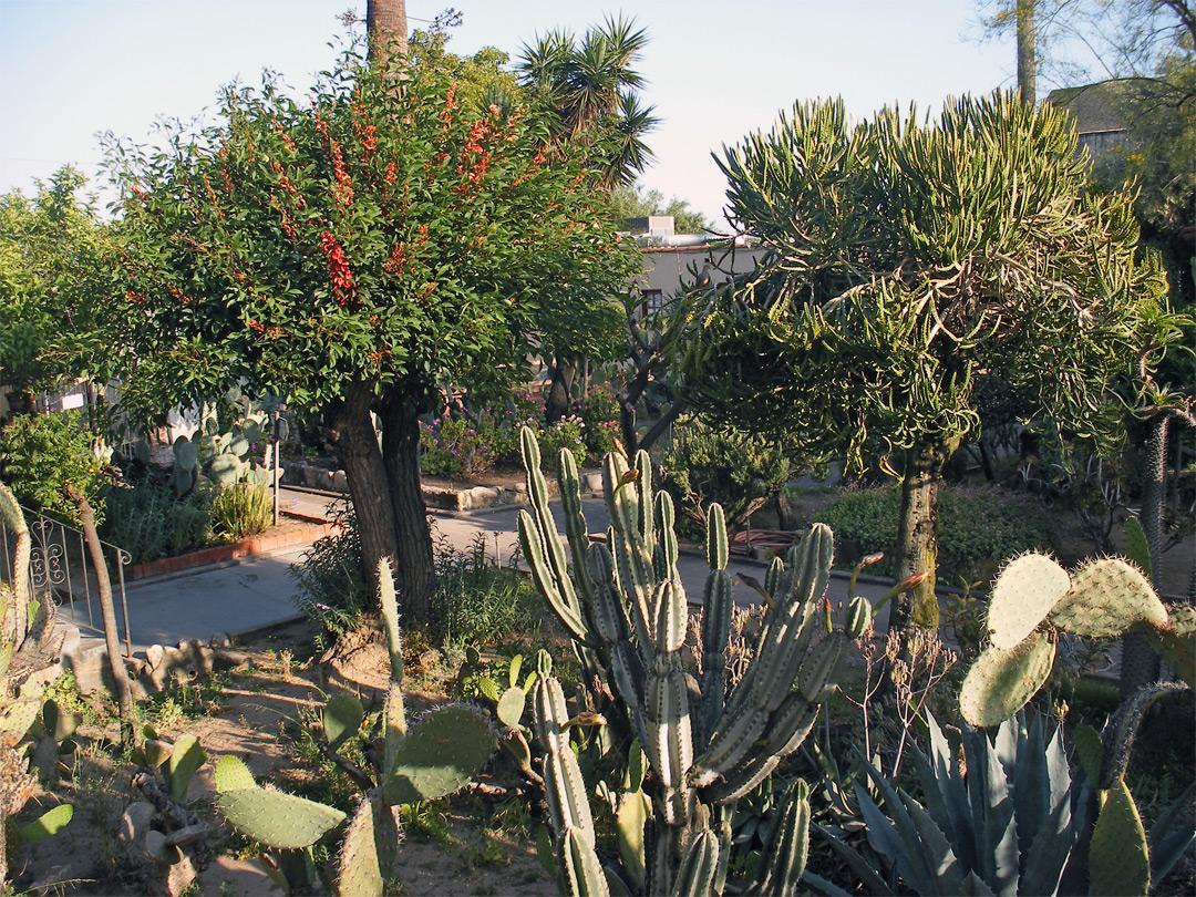 San Gabriel Gardens Jpg