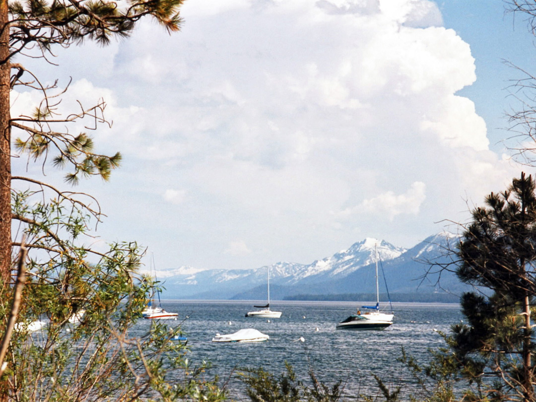 Sail boats on Lake Tahoe