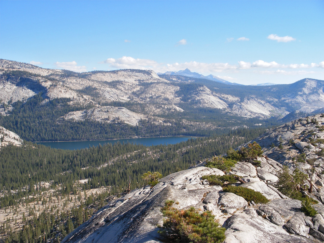 View south to Tenaya Lake