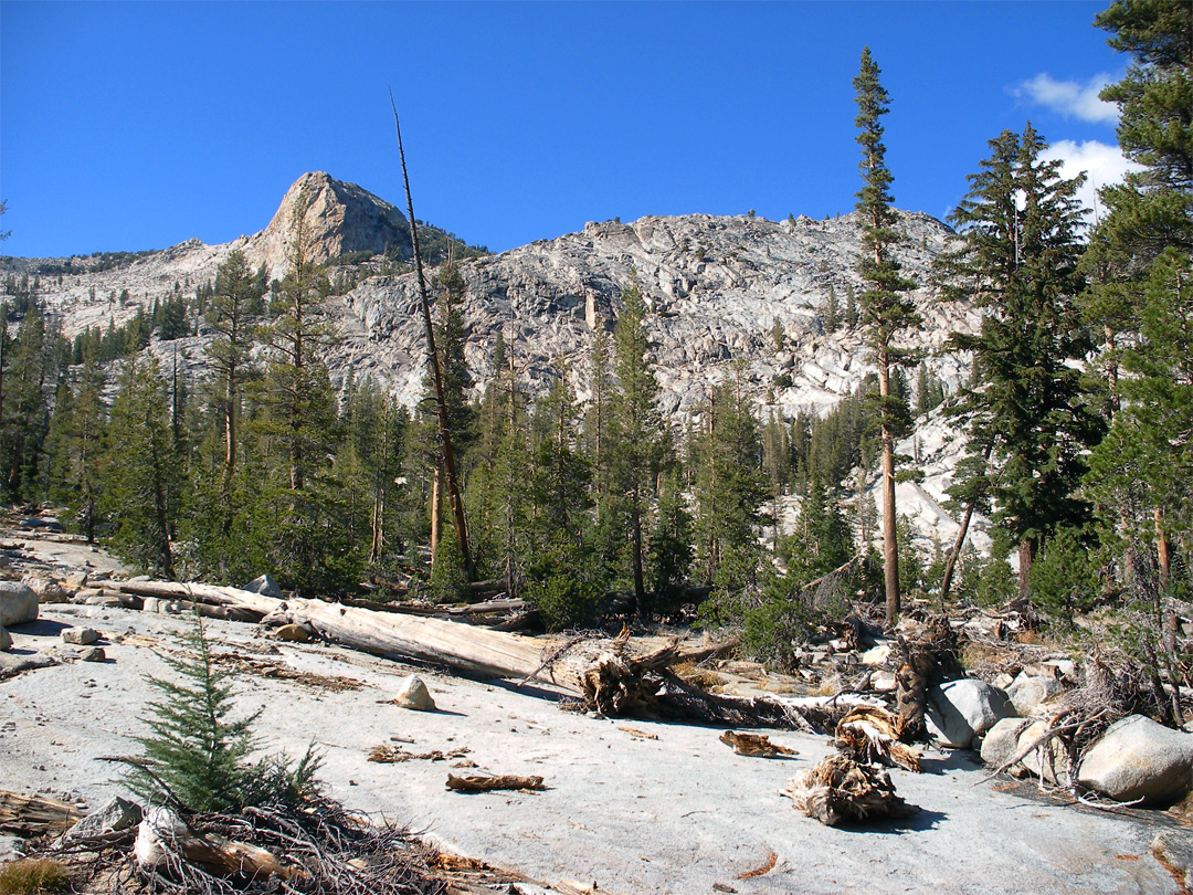 The trail, north of May Lake