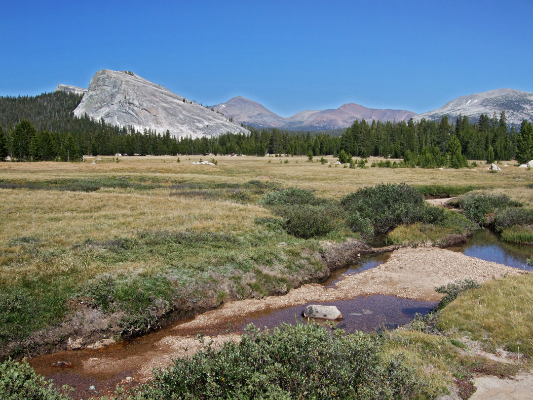 Stream across Tuolumne Meadows