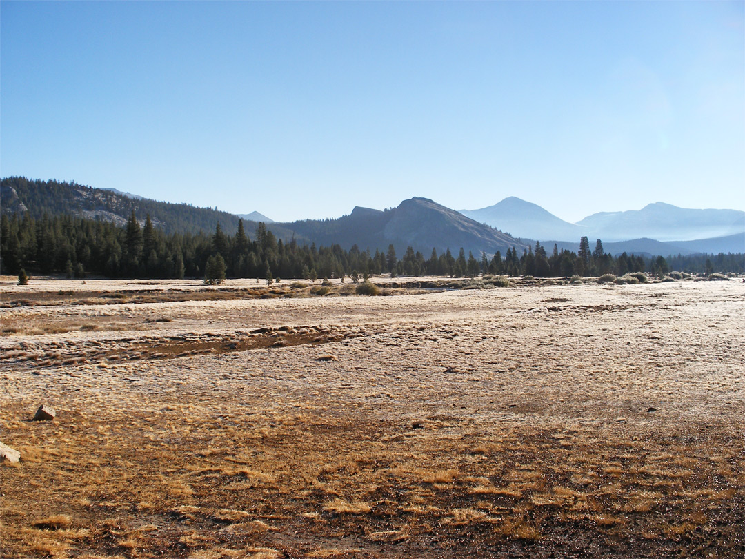 Sunrise at Tuolumne Meadows