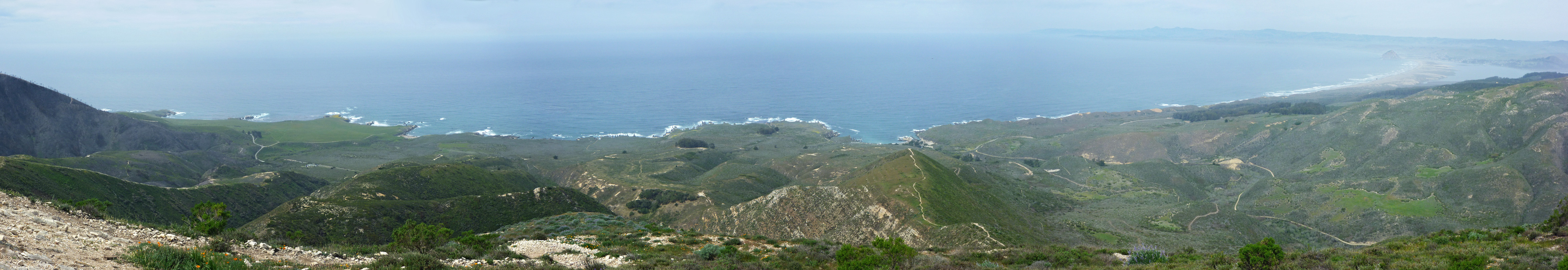 The Montana de Oro coastline, from the top of Valencia Peak