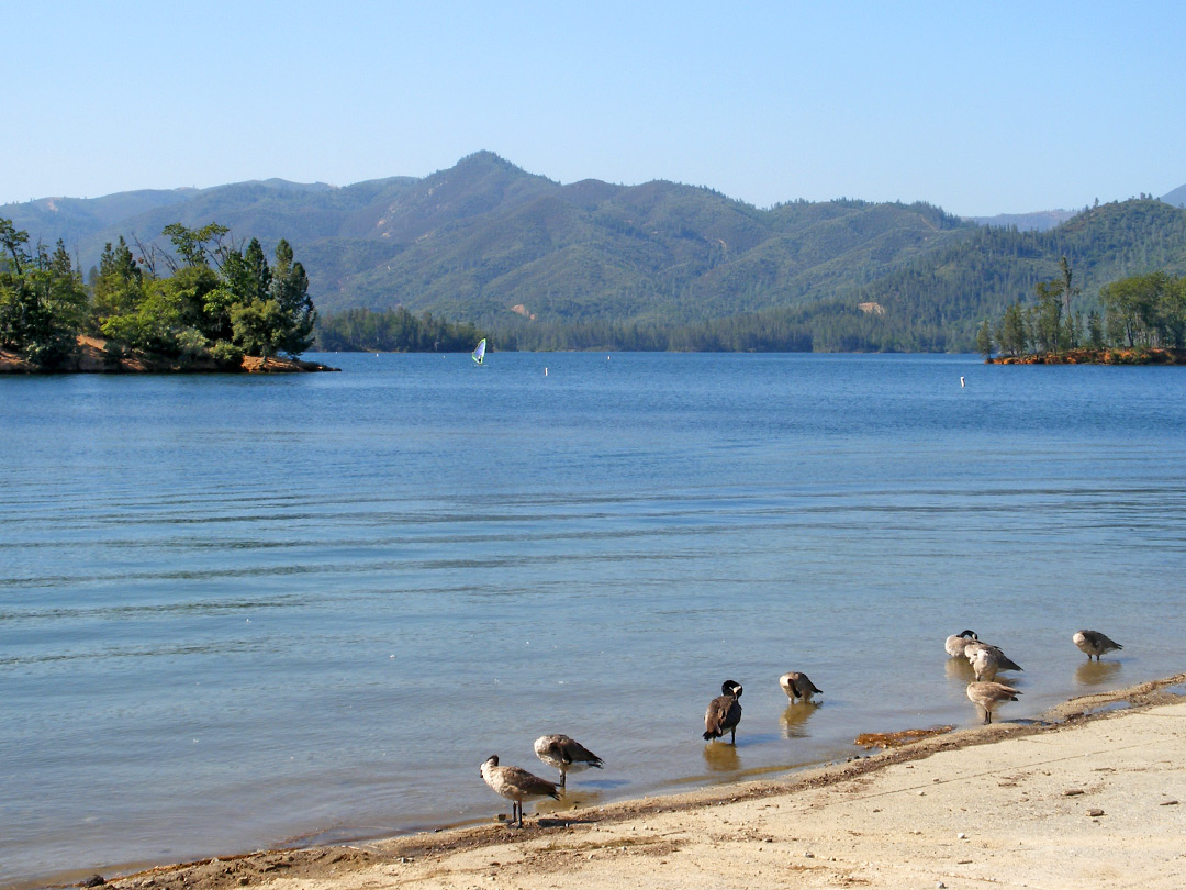 Beach on Whiskeytown Lake