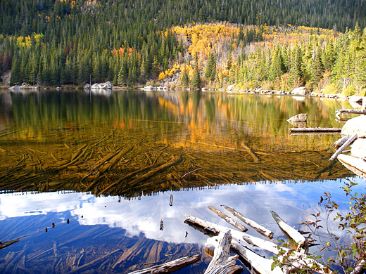 Reflections on Bear Lake