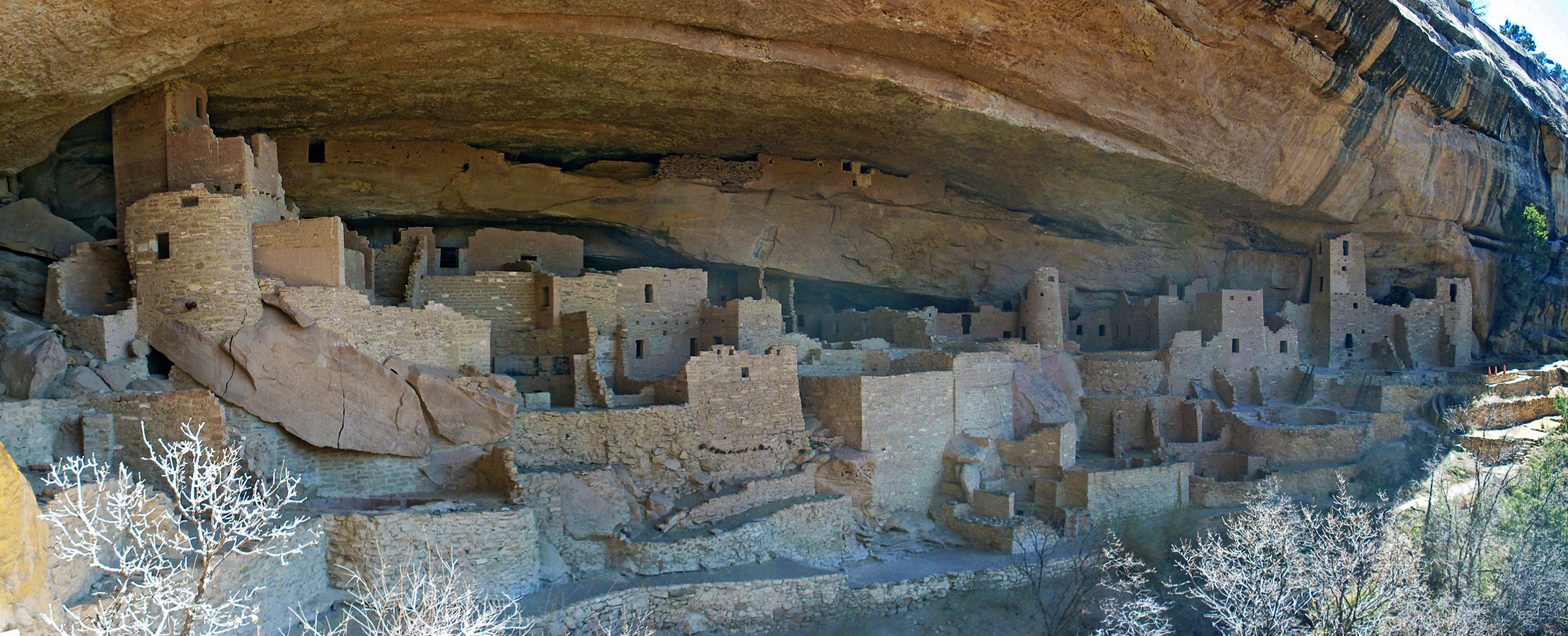 Wide view of Cliff Palace