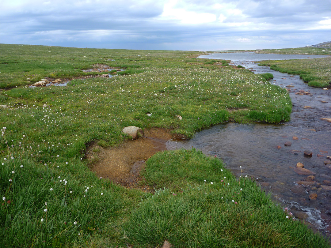 Stream across tundra