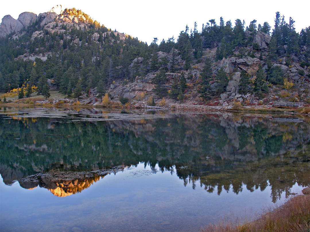 Reflections on Lily Lake