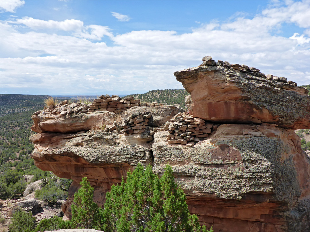 Canyons Of The Ancients National Monument Colorado