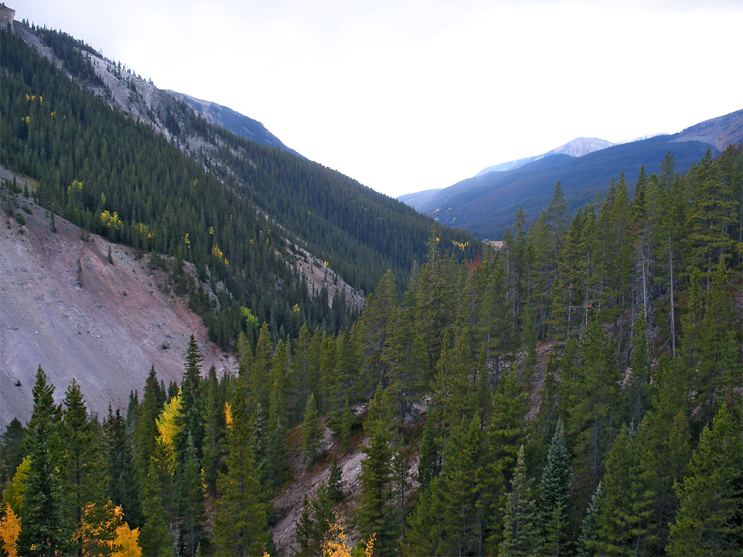 View on the Yellowstone Trail