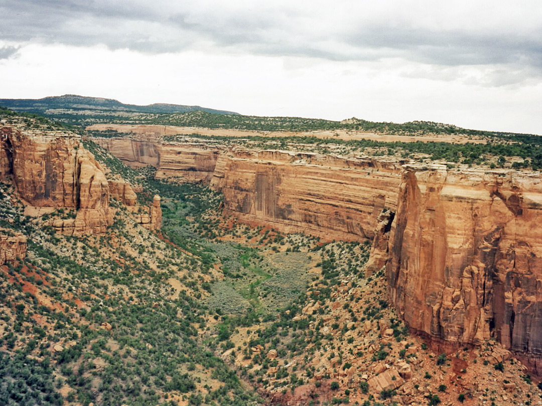 Upper end of Ute Canyon