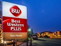 Best Western The Tree House Motor Inn