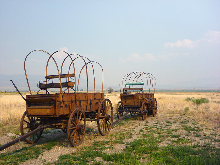 Two wagons