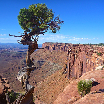 Grand View Trail Canyonlands Np Highlights The Most Famous National Parks In The Southwest