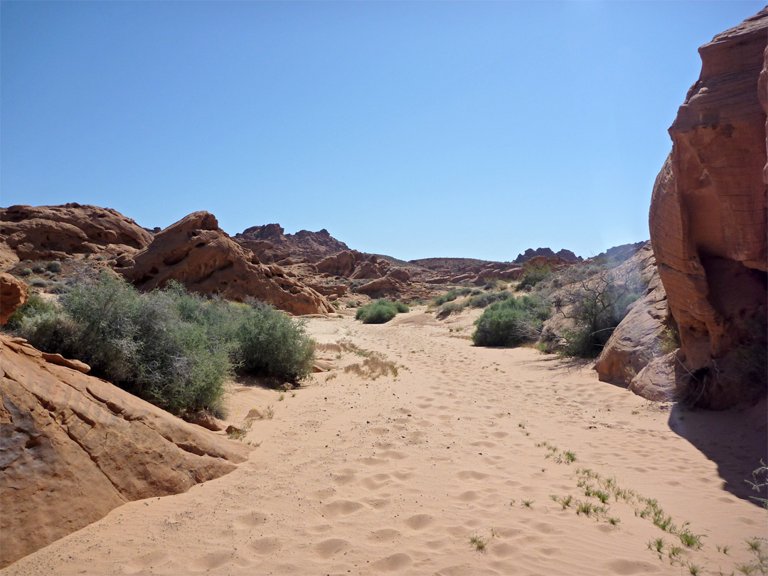 Wide, sandy wash