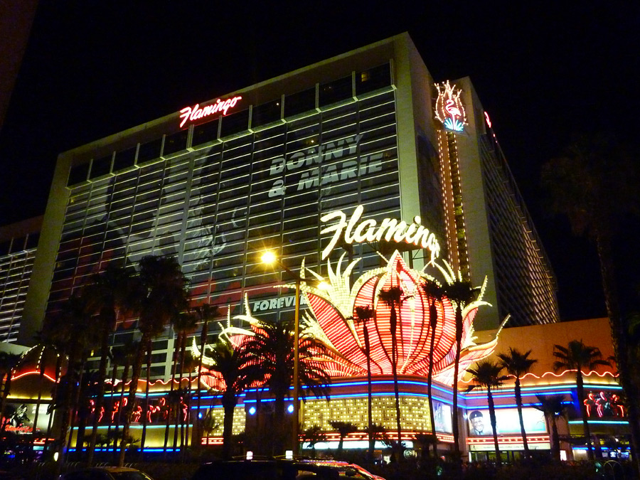 Flamingo Casino
