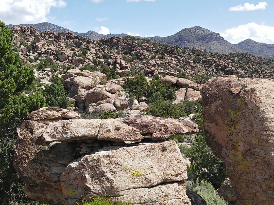 Granite rhyolite