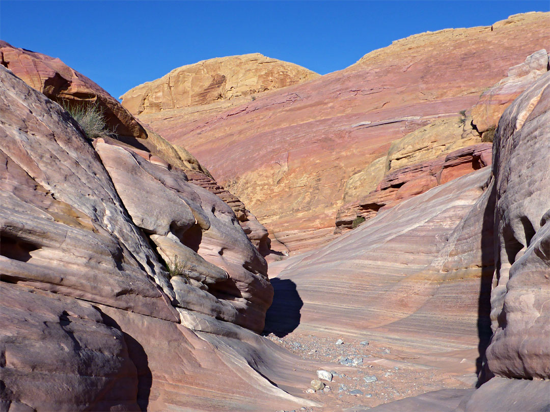 pastel canyon valley of fire