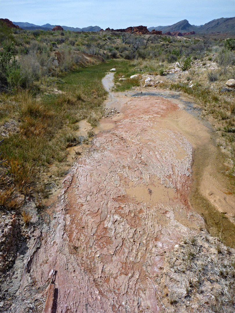 Red Rock Springs